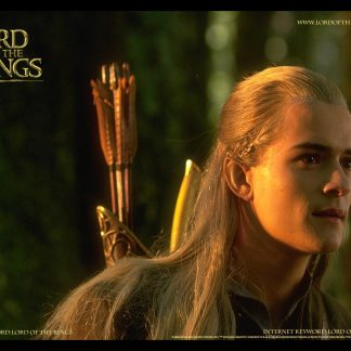 1 Panel Legolas The Bowman Multi Canvas Art