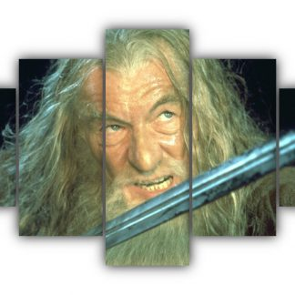5 Panels Gandalf in Action Multi Canvas Art