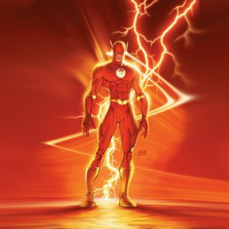 1 Panel Flash from Justice League Multi Canvas Art
