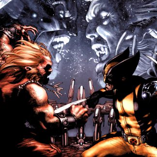 1 Panel Wolverine vs Sabertooth Multi Canvas Art