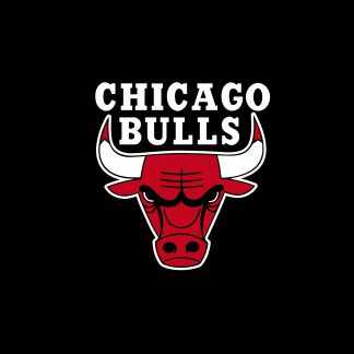 1 Panel Chicago Bulls Logo Multi Canvas Art