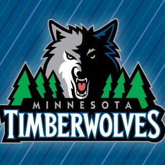 1 Panel Minnesota Timberwolves Logo Multi Canvas Art