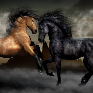 1 Panel Artistic Stallions  Multi Canvas Art