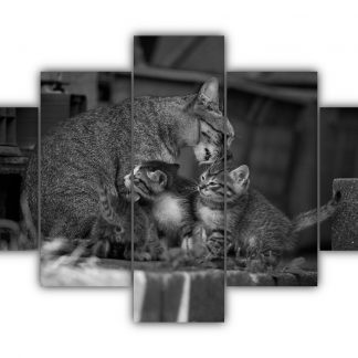5 Panels Cat Family Multi Canvas Art