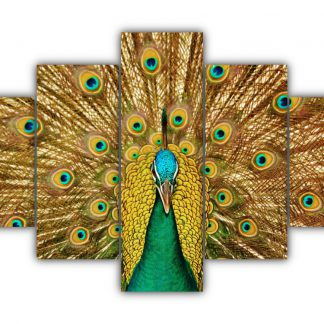 5 Panels Peacock Wonder Multi Canvas Art