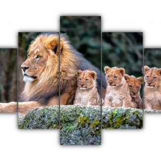 5 Panels King Lion and his Cubs Multi Canvas Art