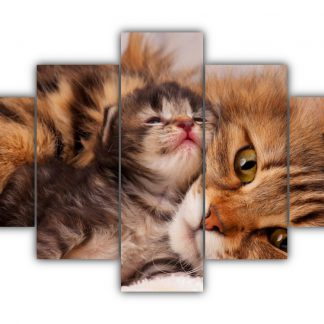 5 Panels Mama Cat and her Kitten Multi Canvas Art