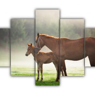 5 Panels Mare and Foal 2 Multi Canvas Art