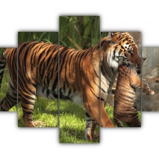 5 Panels Mother tiger carrying her cub Multi Canvas Art