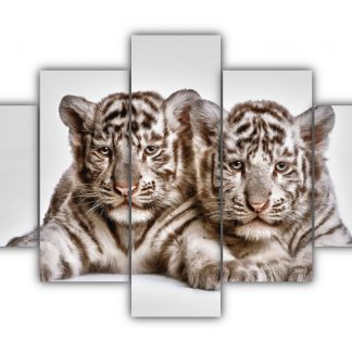 5 Panels Tow cute white tiger cubs Multi Canvas Art